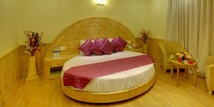 shimla manali honeymoon packages - shimla manali honeymoon package
