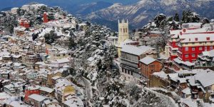 shimla tour package - shimla tour packages - shimla tour